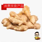【重庆贫困户产品】潼南本地老姜【40斤】只限潼南区内出售